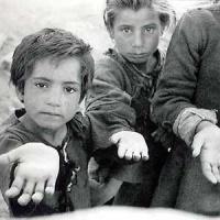 16 de octubre - Día Mundial de la AlimentaciónLOS SISTEMAS ALIMENTARIOS SUFREN UN VIOLENTO DETERIORO POR LA CRISIS CLIMÁTICA, LOS CONFLICTOS Y LA COVID-19